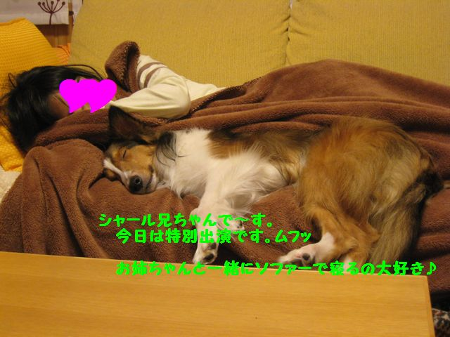 IMG_3319-1.jpg