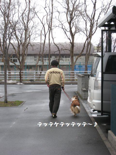 IMG_9399-1.jpg