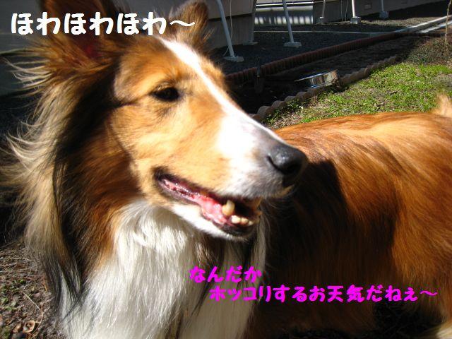 IMG_9576-1.jpg