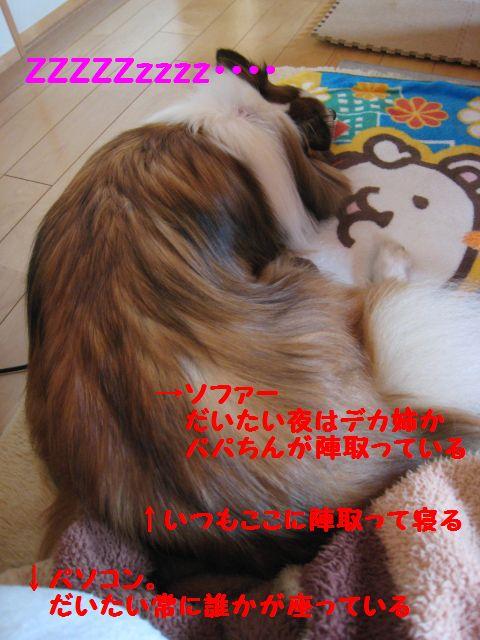 IMG_9598-1.jpg