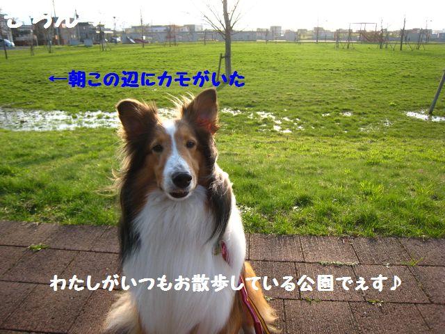IMG_9621-1.jpg