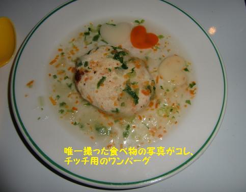 食べ物の写真、これだけ・・・(-_-;)