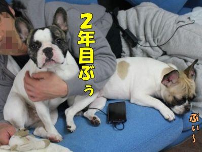 1-1_20120307133607.jpg