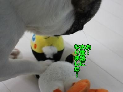 12_20120417122244.jpg