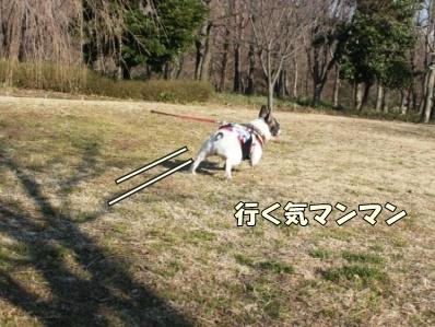 2-1_20120215163021.jpg