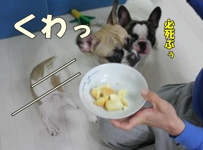 2-1_20120321155412.jpg