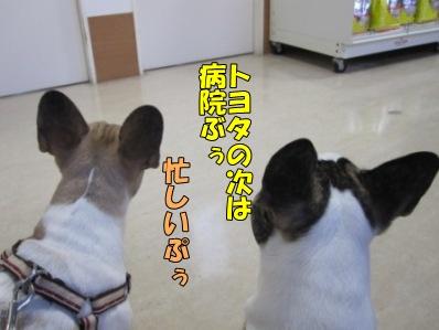 3-1_20120220141750.jpg