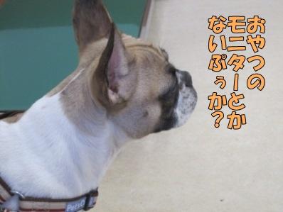 6_20120220150032.jpg