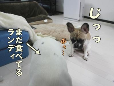7-1_20120321155424.jpg