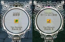choyaku80.jpg
