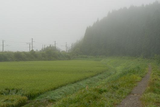 090830 梵字川の土手道を鉄橋へ