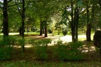 091011 国際教養大学(旧営林署)