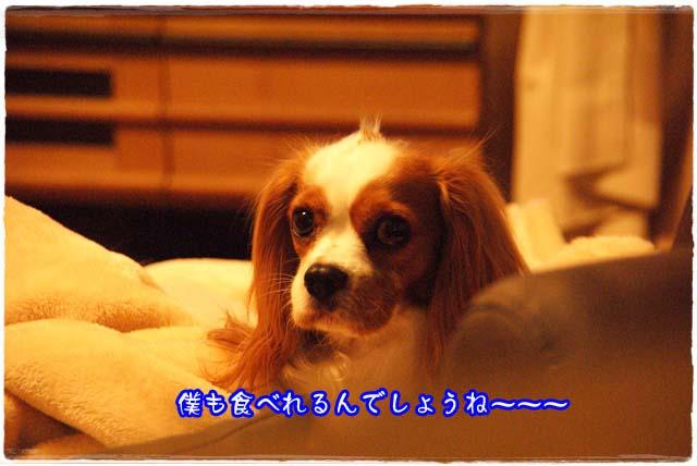 20111021_6.jpg