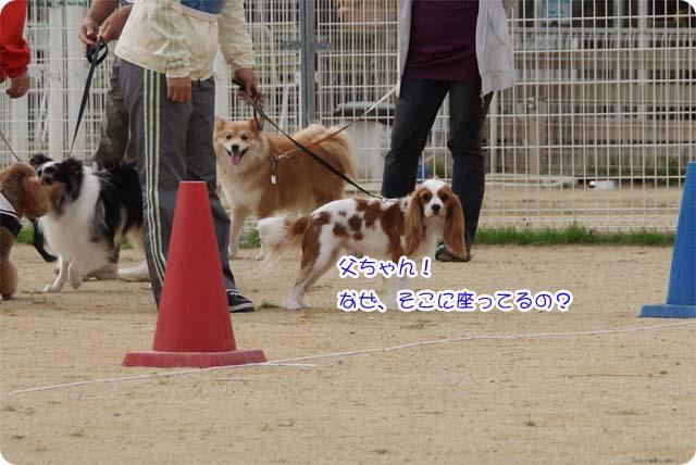 20111113_18.jpg