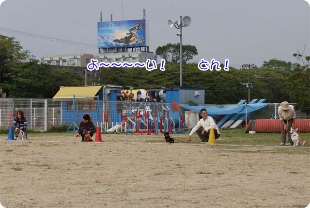 20111113_23.jpg
