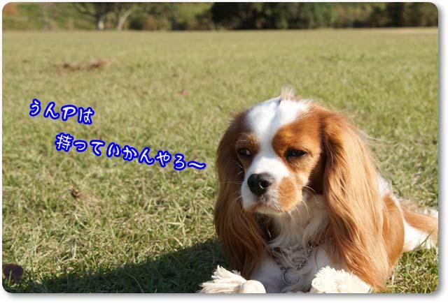 20111205_150.jpg