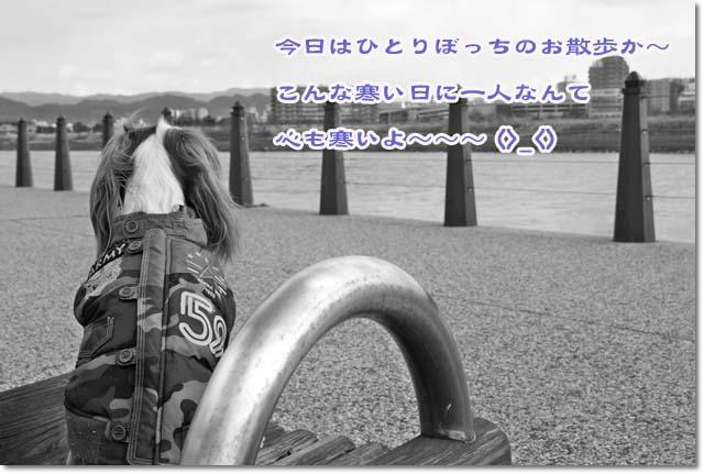 20120126_19.jpg