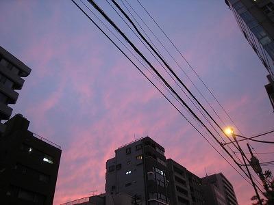 IMG_0293.jpg