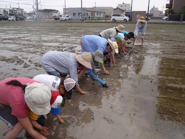 2011.6.4 田植え体験&交流会 004