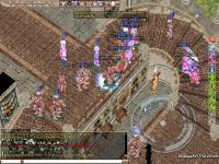 2009-8-16-01.jpg