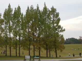備北丘陵公園 1581