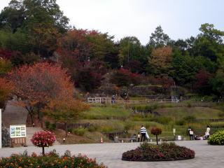 備北丘陵公園 2611
