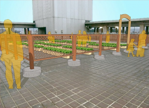 s-屋上菜園