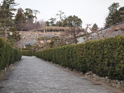御城番屋敷(別の位置から撮影)