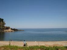 WCC48代私用ノート blog-海