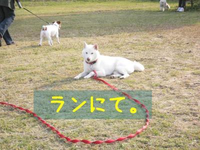 18_20111127221945.jpg