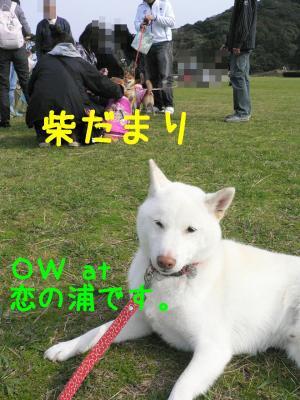 2_20111127214118.jpg
