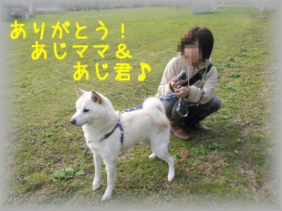 4_20111202220759.jpg