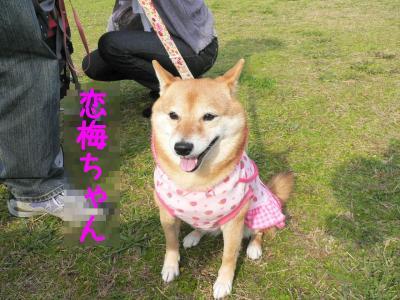6_20111127214115.jpg