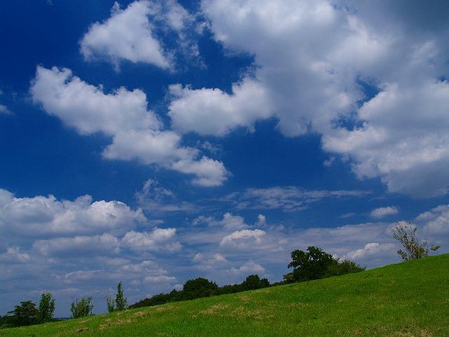 s-iyppP8150482里山公園1