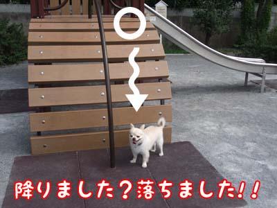 ochimasu3