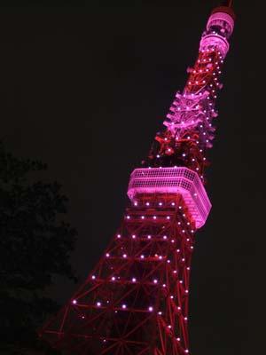 towerpink1