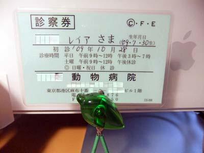 DSCF7361.jpg