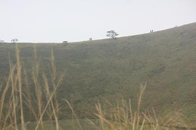 薄のお山です。