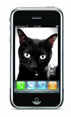 黒猫Ritsu