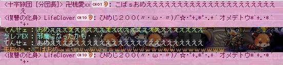 Maple120108_231207.jpg