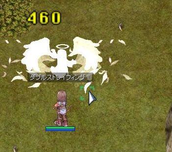 3_20091020104529.jpg
