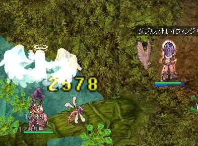 3_20091023132948.jpg