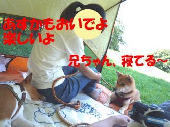 bP1080644.jpg