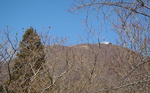 万年山鶴見岳 101-1