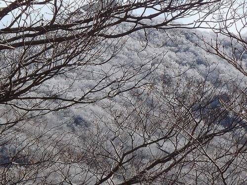 万年山鶴見岳 096-1