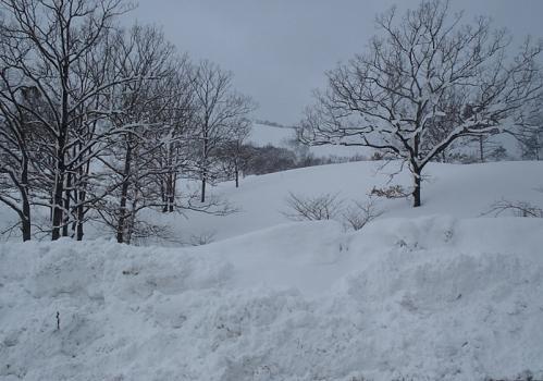 もみのき森林公園~深入山 045-1