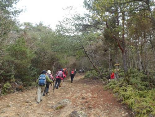 里山ハイキング講座 白木山 002-1