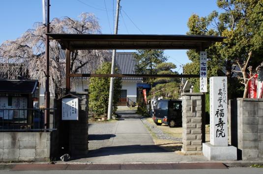 桜 福寿院 門