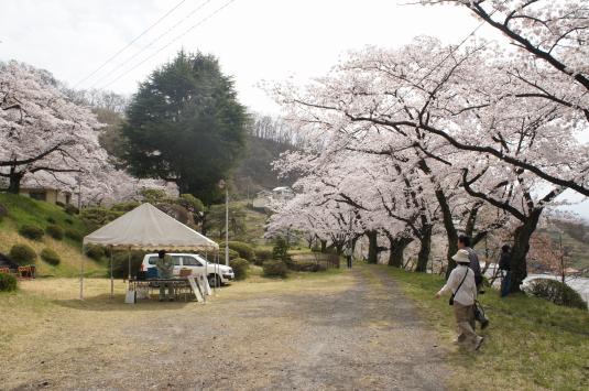 桜 配水場 外観
