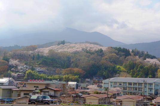 桜 大法師公園 外観